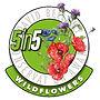 David%20Bellamy%205in5wildflowers2018-30