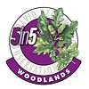 5in5woodlands2020-300.jpg