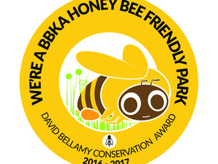 "We are officially a ""Honey Bee Friendly"" park"