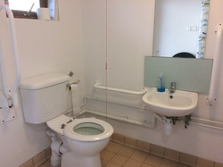 Wet room sink and toilet