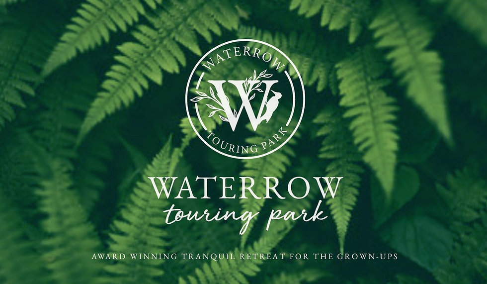 Waterrow brand with fern background.jpg