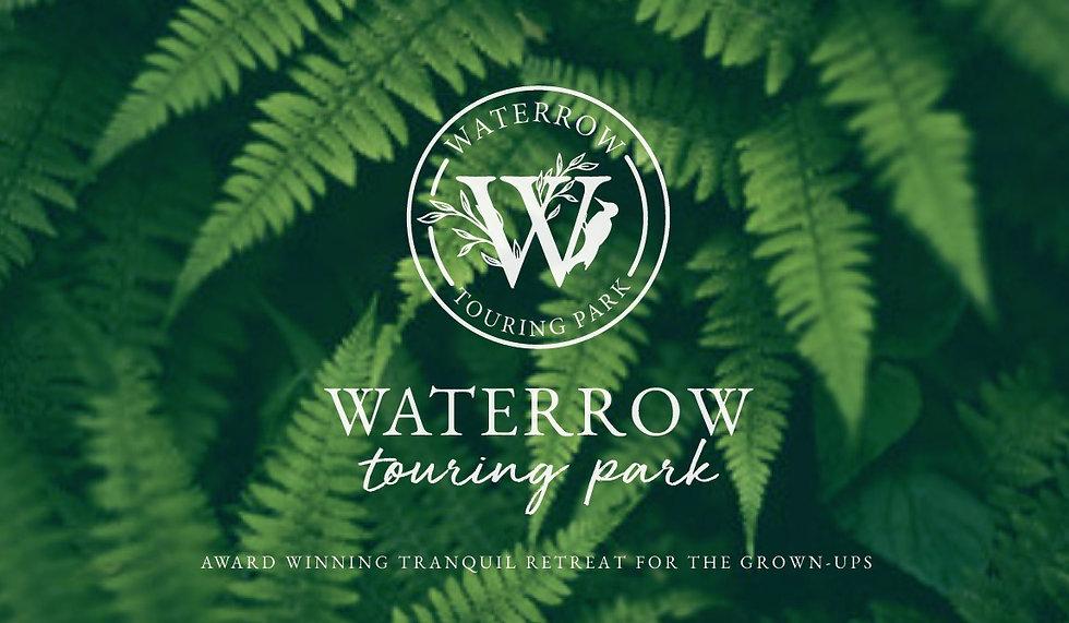 Waterrow brand with fern background.jpg