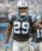 mike adams north carolina panthers copy.