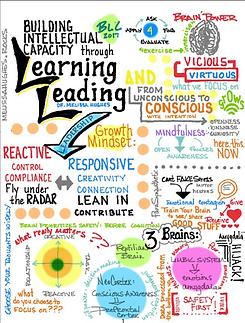 Building Intellectual Capacity through L