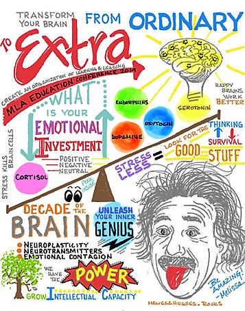 Transform your Brain