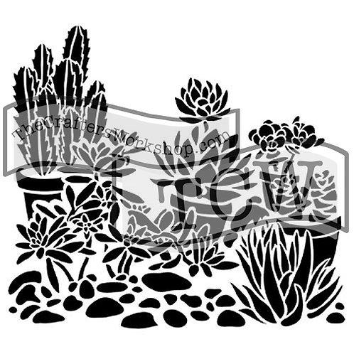 """TCW 6X6"""" Mini desert Garden"""