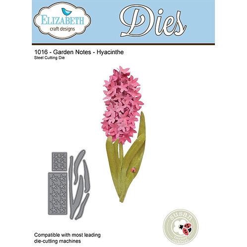 1016 - Susan's Garden - Garden Notes - Hyacinthe