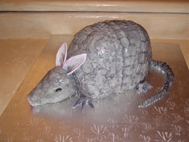 Carved 3-D Armadillo cake