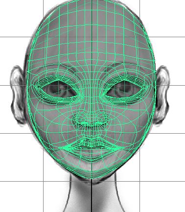 Model: Head