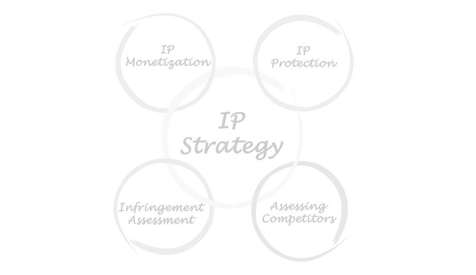 IP_strategy_edited_edited.jpg