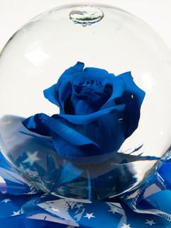 Blue with Star Mylar Flower Globe