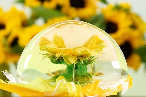 Sunflower Flower Globe