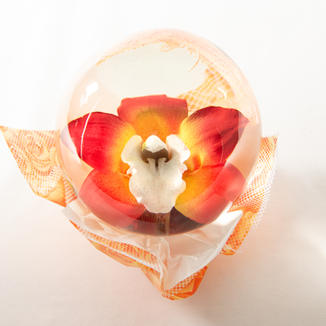 Sunrise with White Center Orchid Flower Globe