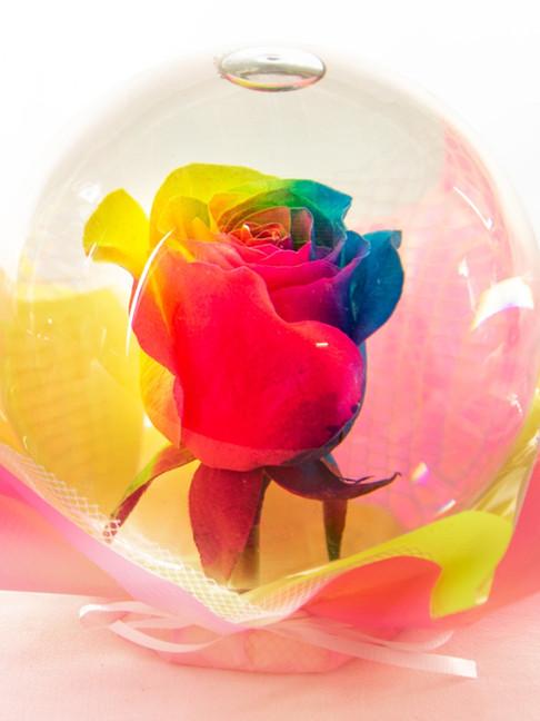Rainbow Flower Globe
