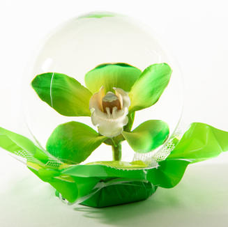 Yellow to Lime Green Orchid Flower Globe