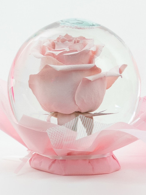 Blush Flower Globe