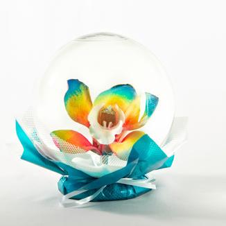 Rainbow Orchid Flower Globe