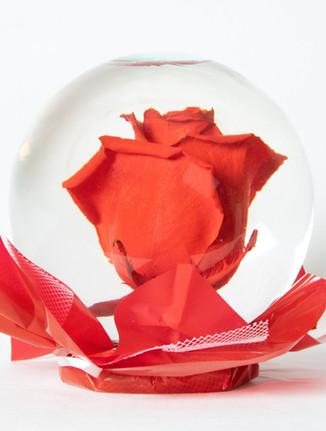 Red Flower Globe