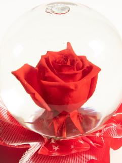 Red with Star Mylar Flower Globe