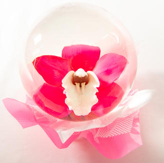 Hot Pink with White Center Orchid Flower
