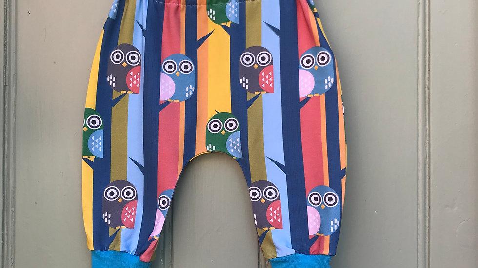 Harem pants in Patrick the Owl .