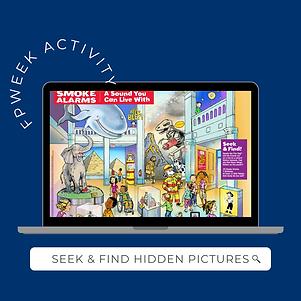 SEEK & FIND HIDDEN PICTURES.png