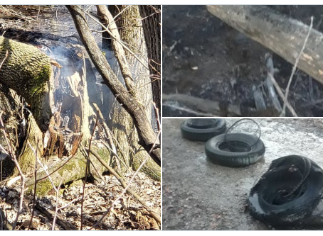 OPP SEEK PUBLIC'S ASSISTANCE WITH RASH OF SUSPICIOUS FIRES IN THE TOWN OF MINTO