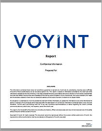 Voyint Report Cover Page.png