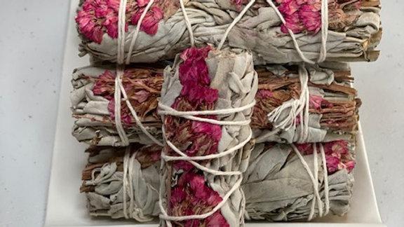 Pink Sinuata & White Sage 4 inch