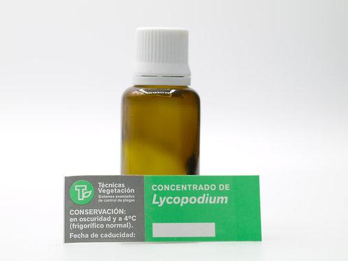Lycopodium 50 cc