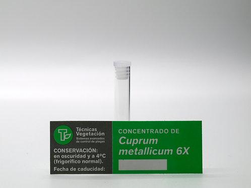 Cuprum metallicum 6 X