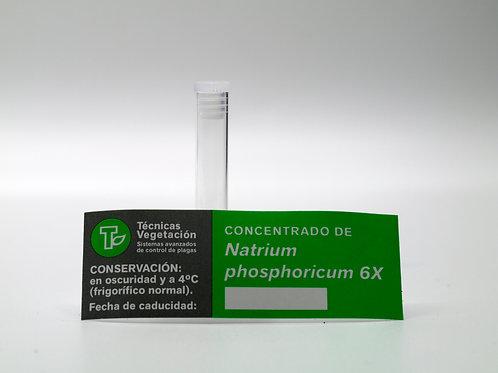 Natrium phosphoricum 6 X