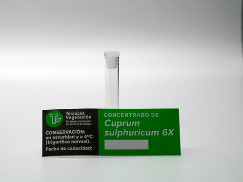 Cuprum sulphuricum  6 X