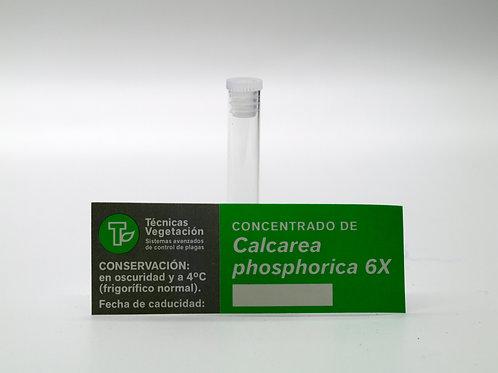Calcarea phosphorica 6 X
