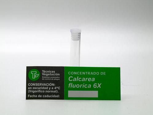 Calcarea fluorica 6 X
