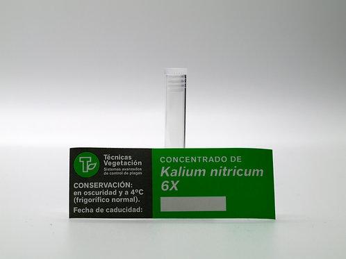 Kalium nitricum 6 X