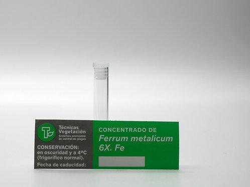 Ferrum metallicum 6 X