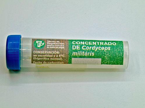 Cordyceps militaris 45 cc