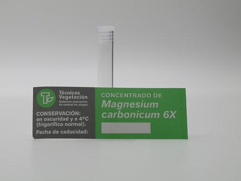 Magnesium carbonicum 6 X