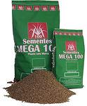 thumbnail_sacaria semente.jpg