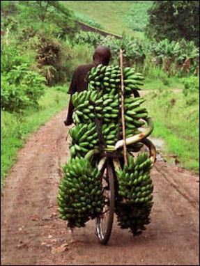 Banana Carrier in Uganda