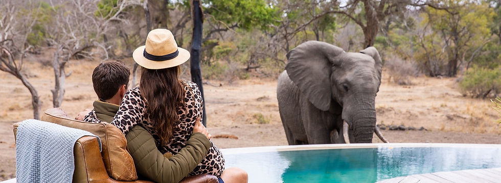 TB - Lifestyle - Couple Watching Elephants 2500px - 001_edited_edited.jpg