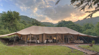 World-class wildlife escapes: see Africa in style on a luxury safari. An African safari doesn't have to mean compromising on comfort. With our hand-picked safaris.