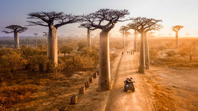 Madagascar, officially the Republic of Madagascar, and previously known as the Malagasy Republic, is an island country in the Indian Ocean, approximately 400 kilometres off the coast of East Africa.