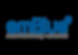 logo emblue.png