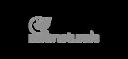 NOBNaturals-colored-logo-01.png