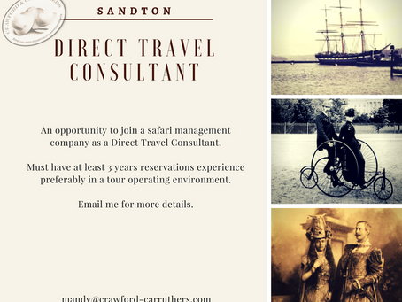 Direct Travel Consultant