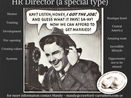 HR Director needed