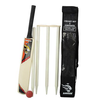 Wooden Beach Cricket Set