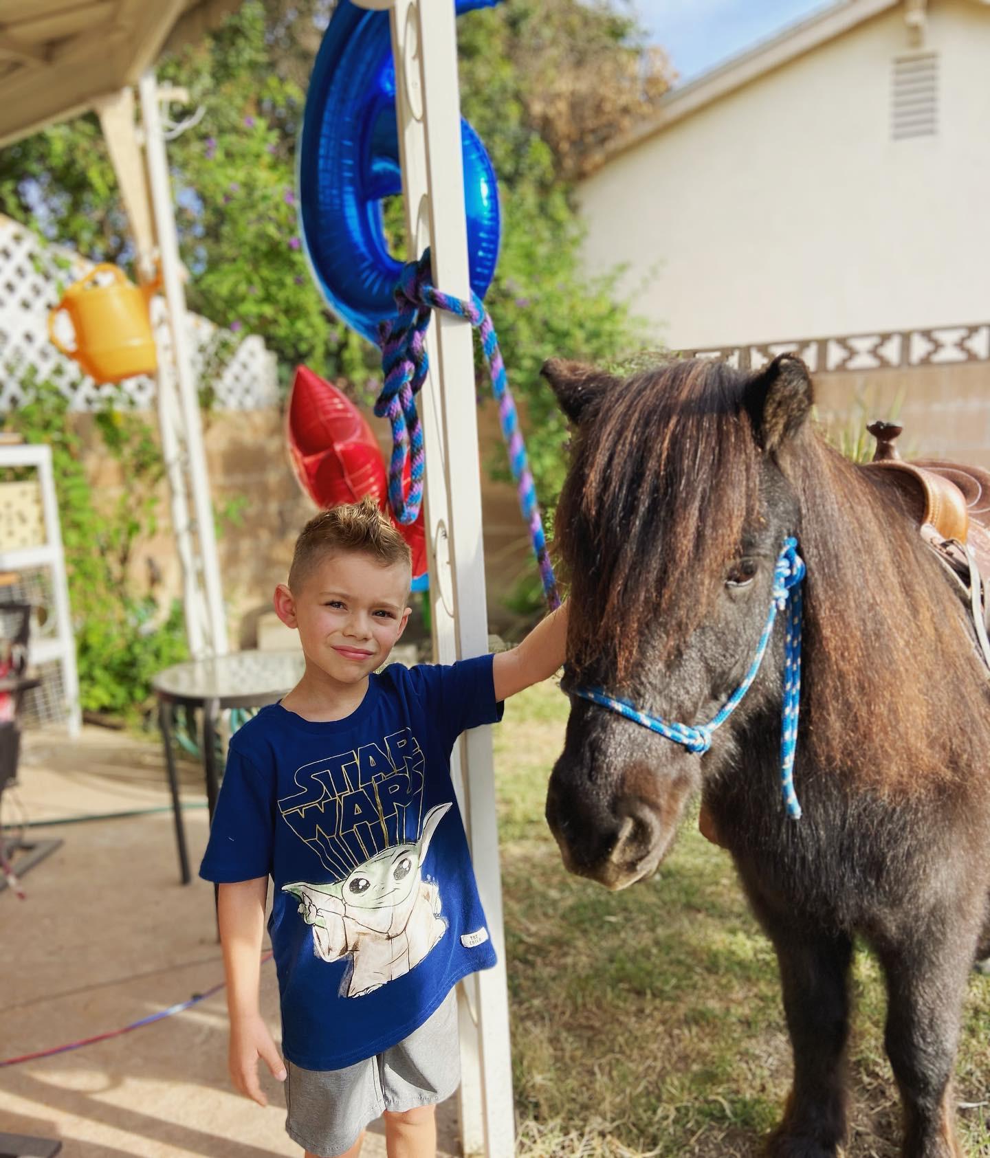 Pony Ride - 2 Ponies